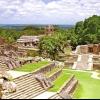 Чи була користь від майя для органічного землеробства?