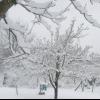 Дача під снігом.