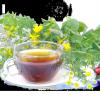 Епідемічний енцефаліт - лікування травами, рецепти