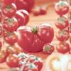 Як відібрати насіння томатів