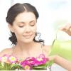 Як вийти у фінал конкурсу домашніх квітів