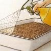 Як виращівть розсаду з великих насіння
