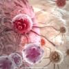 Лейкемія, лейкоз, рак крові, білокрів'я, променева хвороба - лікування травами, рецепти.
