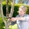 Обрізка плодових дерев і чагарників