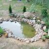 Оформлення водойми рослинами