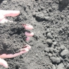 Органічне землеробство на основі сапропелю