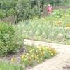 Планування городу