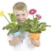 Вітаємо переможців конкурсу домашніх квітів