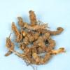 Розлад травлення - лікування травами, рецепти