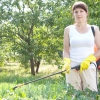 Рослини-репеленти: що посадити, щоб відігнати надокучливих комах