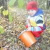 Раз, два, три, чотири, п'ять, дідусь нас в ліс вивів, грибний урожай збирати !!!
