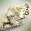 Роль мінералів в нашому організмі
