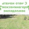 З чого почати органічне землеробство? частина 1
