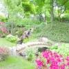 Сади помірного клімату