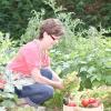 Сезонні роботи в саду і городі: кінець липня - початок серпня