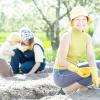 Сезонні роботи в саду і городі: третій тиждень травня
