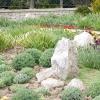 Сезонні роботи в саду і городі: другий тиждень квітня