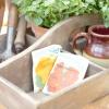 Терміни зберігання насіння овочів