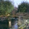 Світло в саду: 7 цікавих ідей