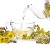 Тромбофлебіт - причини, лікування, народні рецепти на травах