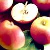 Урожай яблук: про які проблеми саду він може розповісти?