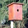 Види пташиних будиночків