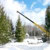 Зимова пересадка лісових крупномірів