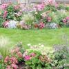 12 Правил розміщення рослин у квітниках