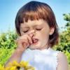 Алергія на дачі, як уникнути, поради