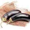 Баклажан: вирощуємо розсадою