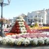 Бал хризантем в Севастополі