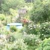 Басейн в саду