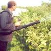 Біологічний метод боротьби з бур'янами