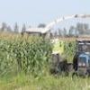Чим відрізняється збирання кукурудзи на зерно від прибирання на силос