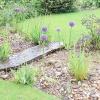 Гравій: як використовувати в саду