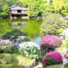 Японський сад: фото та основні тенденції