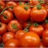 Як і де зберігати вирощений урожай