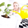 Як підібрати рослини для кухні