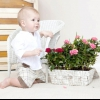Як підібрати рослини в дитячу кімнату