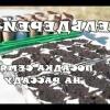 Як посадити кореневої селера і виростити з нього великі коренеплоди