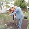 Як посіяти газонну траву правильно, щоб отримати ідеальну зелену галявину