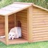 Як побудувати будку