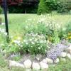 Клумба для вашого саду