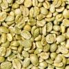 Конголезький зелена кава