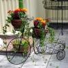Ковані вироби для саду - вдале рішення оригінального дизайну