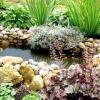 Красиві ідеї виробів для дизайну саду