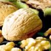 Кращі види і сорти волоських горіхів (з фото)
