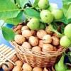 Настоянка з волоських горіхів
