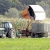 Очищення зерна після збирання на малих територіях. знижуємо витрати.