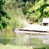 Оформляємо водойму: букет у воді